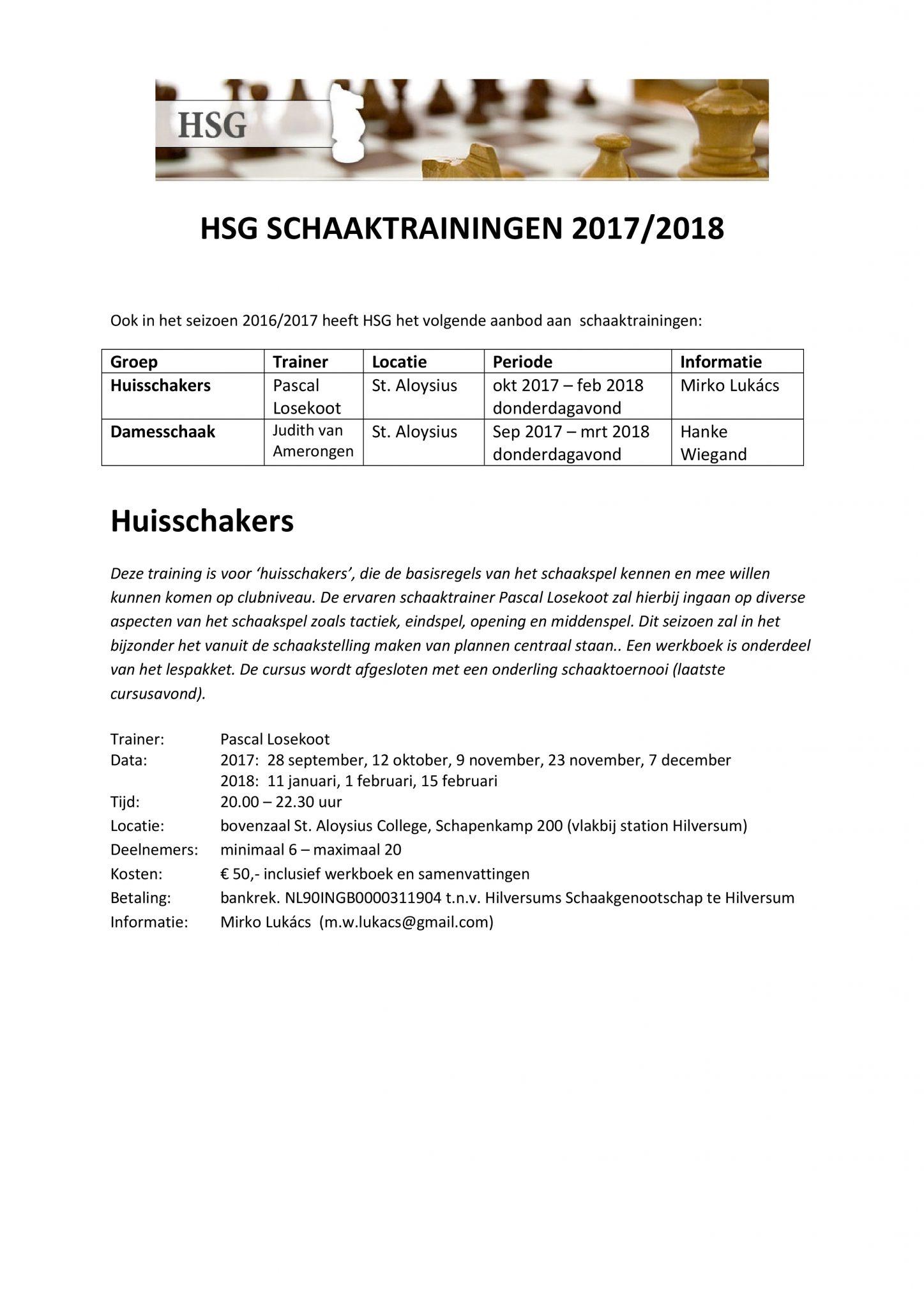 hsg-flyer